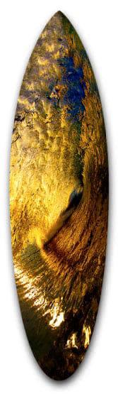 Indigo Water Short Board