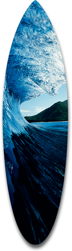 Outer Island Wave Short Board