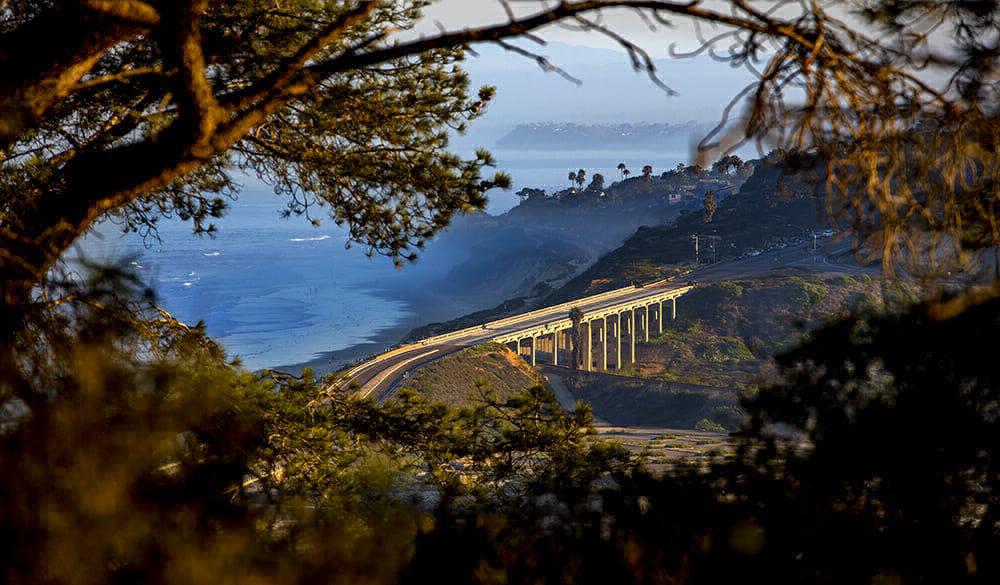 Bridge at Torrey Pines